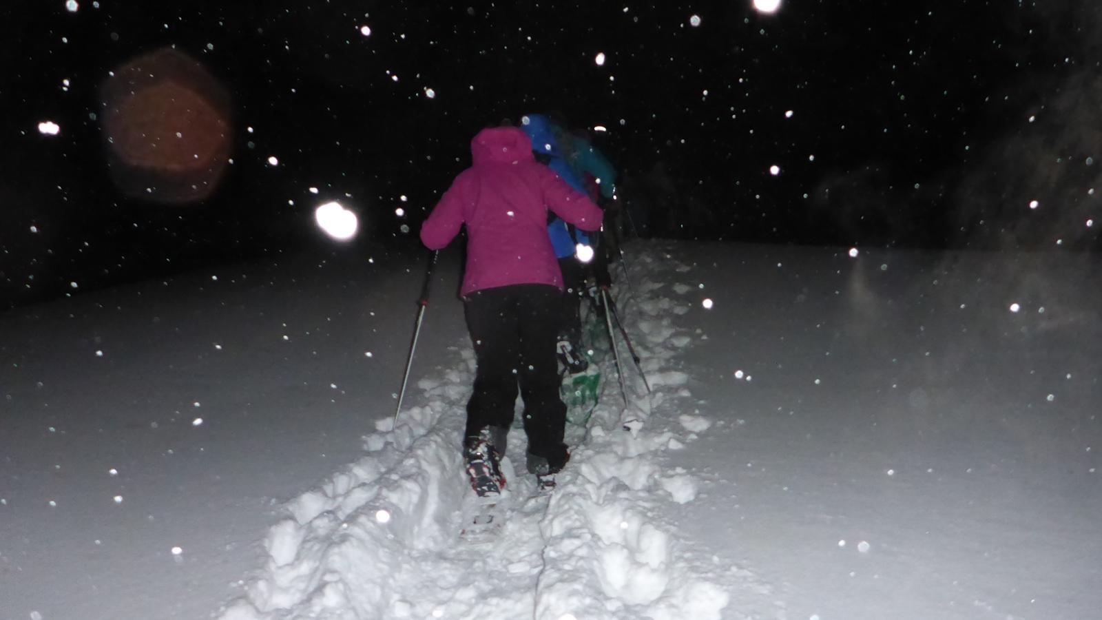 Snowshoe Hiking | Corporate Event | Teambuilding | Snow Adventure