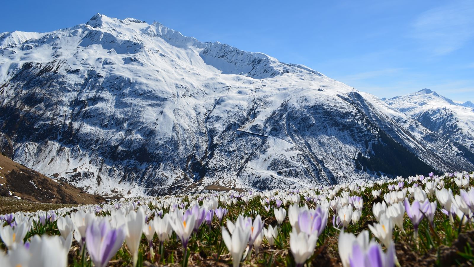 Gemsstock; Andermatt; Springtime; Natschen; Ski Academy